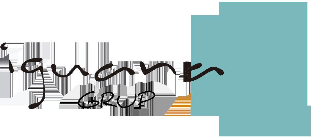 Iguana Group